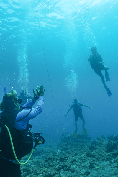 Four scuba divers on the sea floor