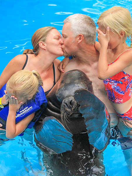 Two children and sea lion covering their eyes as parents kiss