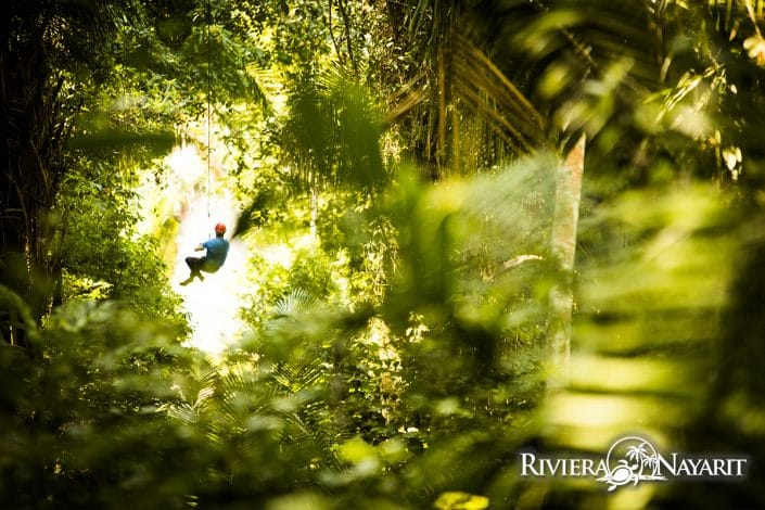 Zip lining through the canopy in Riviera Nayarit Mexico