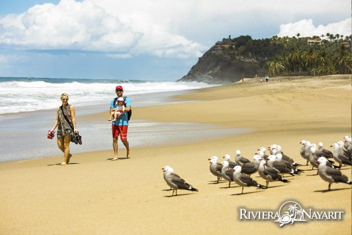 Young family walking the beach with birds in San Pancho Riviera Nayarit Mexico