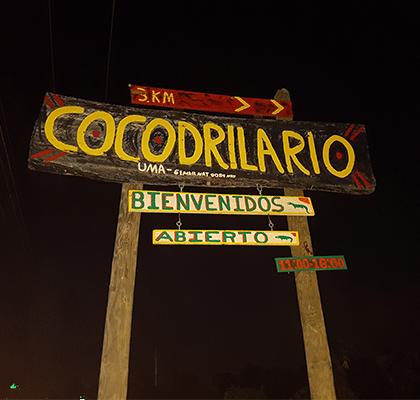 cocodrilario-cora-